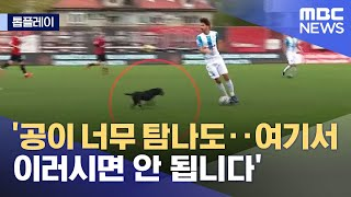 [톱플레이] '공이 너무 탐나도‥여기서 이러시면 안 됩니다' (2021.09.23/뉴스데스크/MBC)