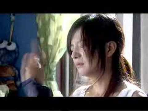 Trailer of Zhao Wei's 07 Tvseries:Thanks for having loved me