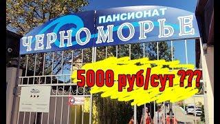 (SCAM)Circle - Will  ДОХОД  +50 % ЗА СУТКИ - РИСКНУЛ НА 5000 РУБ