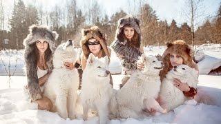 Смешные картинки про кошек и котят Выпуск №58  FUNNY CATS СМЕШНЫЕ КОШКИ