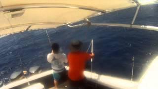 Pesca de un Dorado en El Placer de La Guaira Venezuela