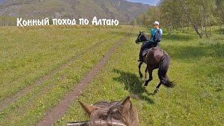 Конный поход по Алтаю