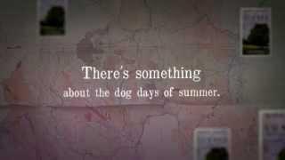 Dog Days of Summer Trailer