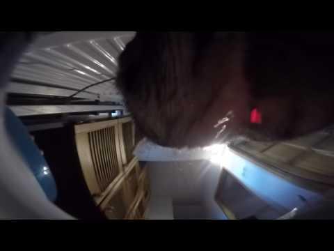 Pilla drinks - underwater camera recording