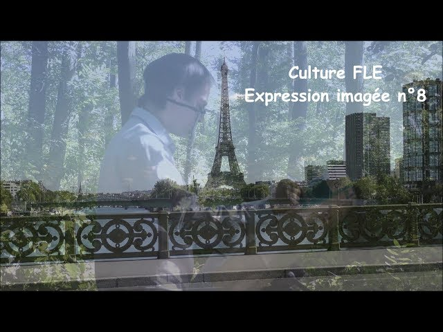 【Culture FLE】Expression imagée n°8
