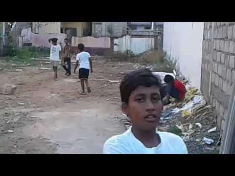 Street Cricket Match
