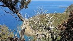 Le tour d'une île d'Or - Port-Cros