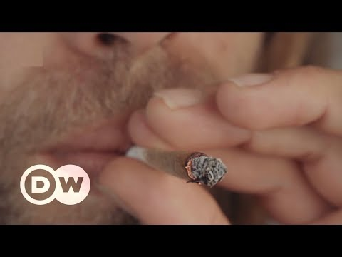 "South Africa's ruling to legalize ""Dagga"" 