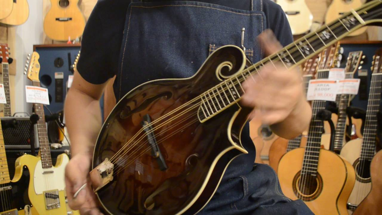 Kentucky Km 1000 Mandolin