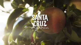 Sustainable Farming | Santa Cruz Organic®