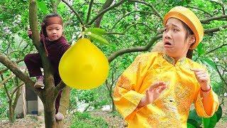 Tổng Hợp Trạng Tí Và Quan Huyện ❤ Thần Đồng Đất Việt - Trang Vlog