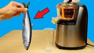 Бедная соковыжималка! Что если сделать сок из селедки, шпрот и крабовых палочек?  alex boyko