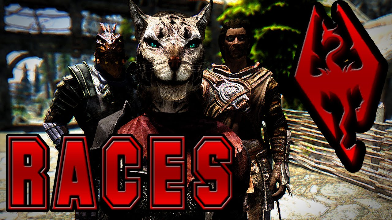 Dark's Top 5 Favorite Skyrim Races