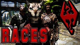 Dark's Top 5 Favorite Skyrim Races
