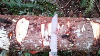 Results of Axe vs Gerber Machete vs ScrapYard 1111 vs Busse Battle Saw vs Busse Team gemini LB