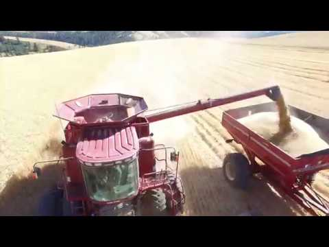 Harvest on Highland 2017 - Dayton, WA
