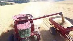 Harvest on Highland 2017 - Dayton, WA