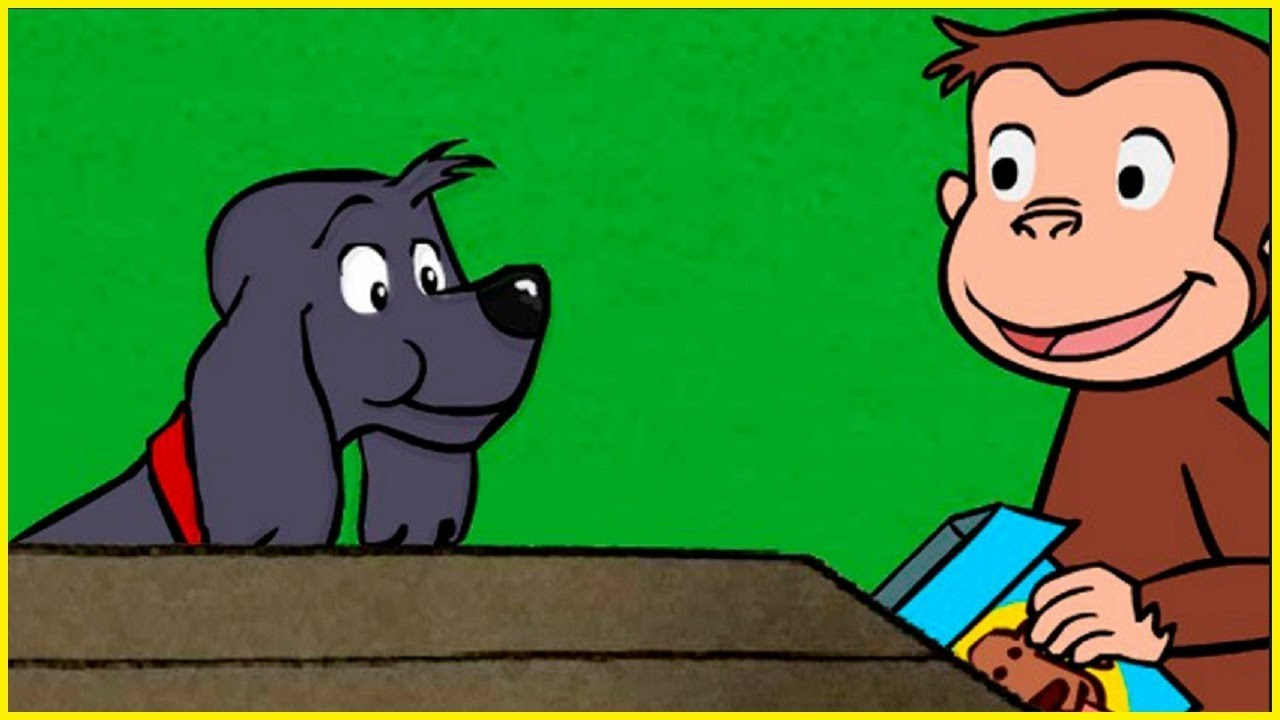 http://pbskids.org/curiousgeorge/busyday/dogs/