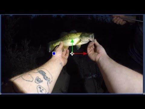 Secret Pond Fishing Fairview Park (Costa Mesa, California) 7-2-19