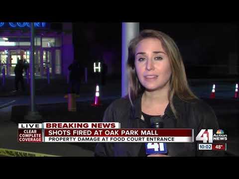 Shots fired at Oak Park Mall