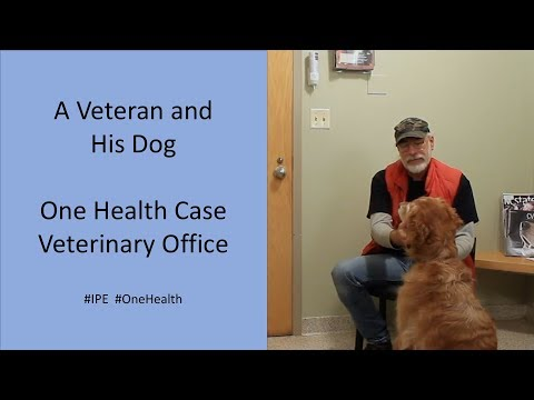 a-veteran-and-his-dog-|-one-health-veterinary-office