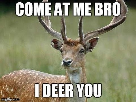 Funny Reindeer Meme : Thehunter hilarious dying deer youtube