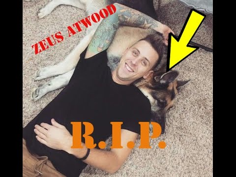 Thumbnail: ZEUS ATWOOD IS DEAD!!! (ROMAN ATWOODS DOG)