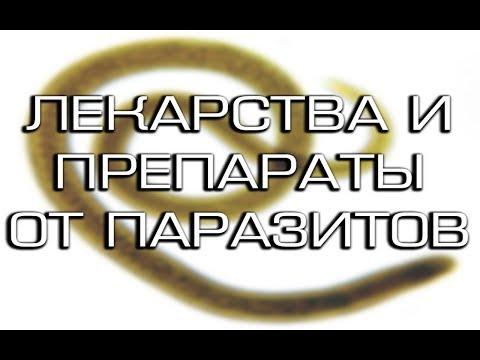 Лекарство от паразитов: список препаратов широкого спектра действия