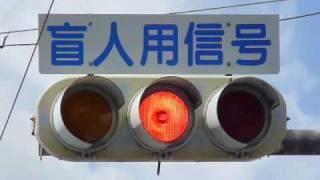 兵庫県で見つけた信号機詰め合わせ thumbnail