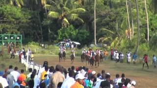 guyana horse racing norman singh memorial turf club arima park