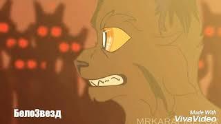 Ежевика и Коршун [Коты Воители-Cats Warriors{заказ:Вересколапка КВ}(Брат за брата]