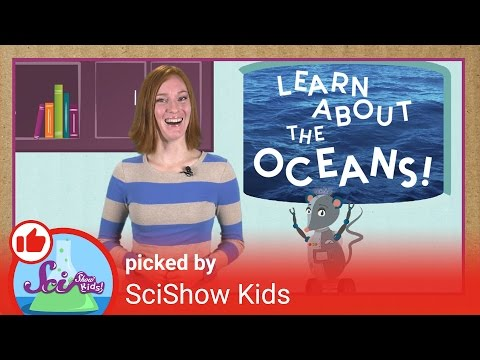 learn-about-the-oceans!