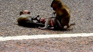 Be careful baby ! Do not do like this on the road, it very danger anytime , Good luck baby