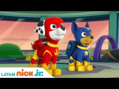 ¡Salvando A Apollo El Super Cachorro! | Paw Patrol | Nick Jr. | América Latina | Español