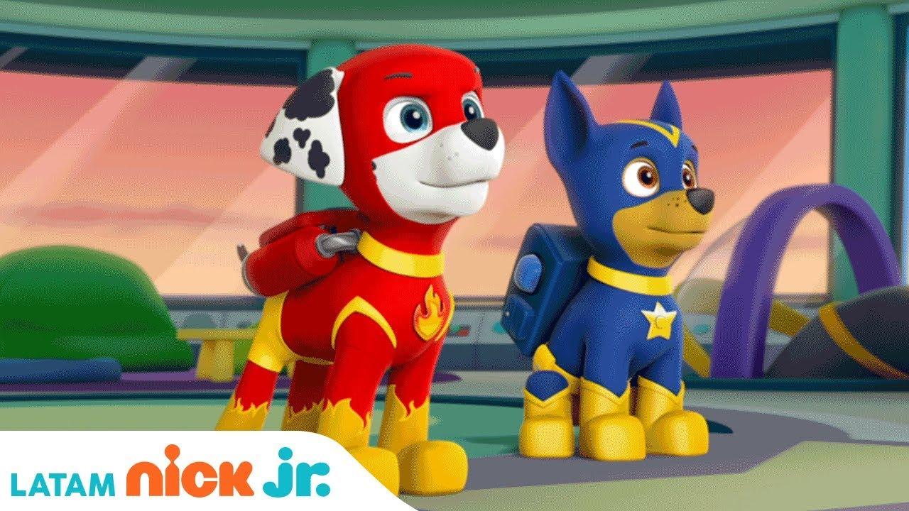 ¡Salvando a Apollo el Super Cachorro!   Paw Patrol   Nick Jr.   América Latina   Español