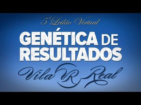 Lote 09   Shanid FIV VRI Vila Real   VRI 1536 Copy