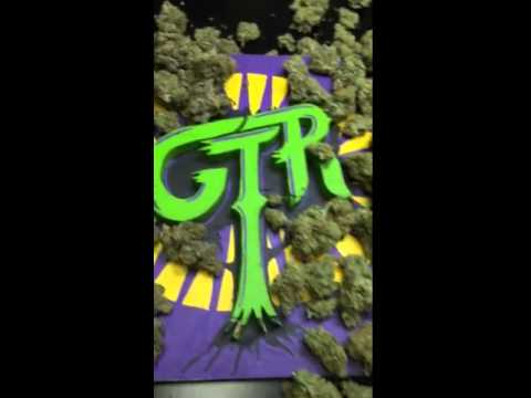 GTR GREEN TREE REMEDY FLOWER