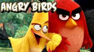 Angry Birds / Энгри Бердс - Гонки в кино! Мультфильмы для детей 2016