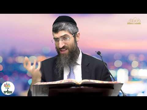 שאלות בהלכה -הרב יצחק יוסף HD