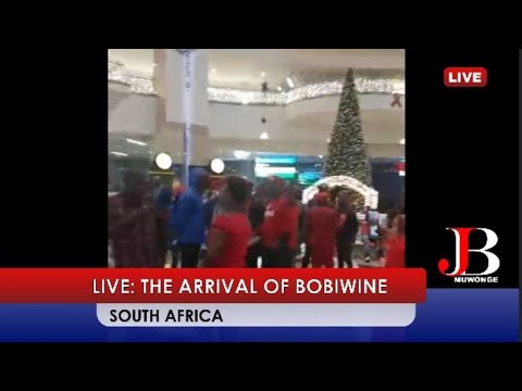 THE ARRIVAL OF BOBIWINE - SOUTH AFRICA