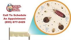 Kansas City Bed Bug Removal | Kansas City Bed Bug Exterminator | Bed Bug Pest Control