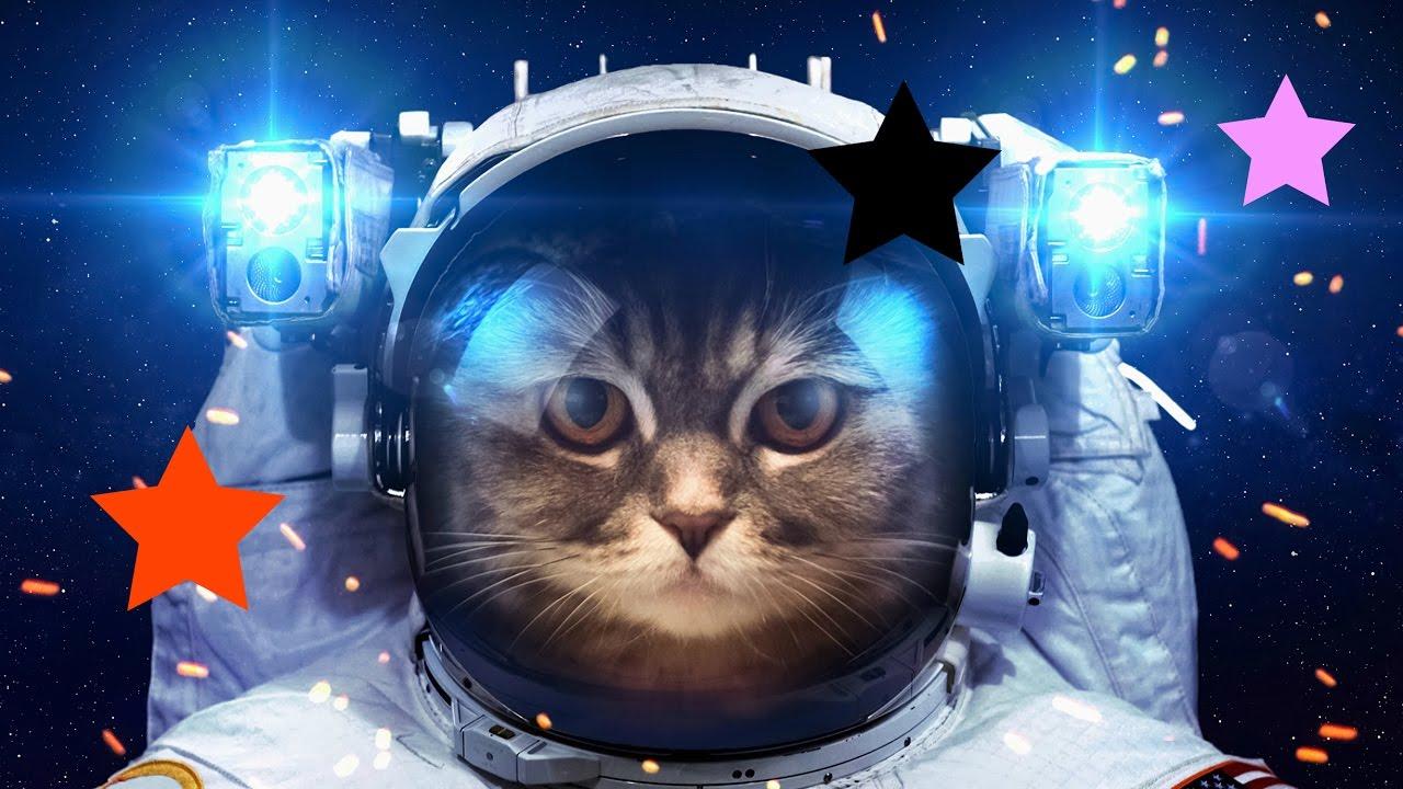 сша фото приколы день космонавтики время избегаем строгих