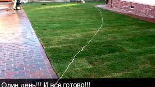 Рулонный газон.(Офиц.сайт http://design-grant.ru/ тел. 8 902 297 0000 Самара; 8 9278 91 06 61 Тольятти skype: grant_250 Мы на Facebook: ..., 2013-07-03T17:51:11.000Z)