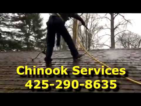 Soft Wash Roof Care Moss Removal - Pressure Washing Alternative Seattle