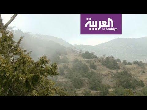 زيارة لغابة رغدان في الباحة السعودية  - نشر قبل 29 دقيقة