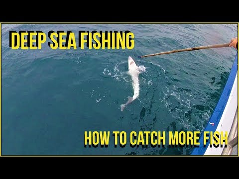 How To Catch More Fish Deep Sea Fishing