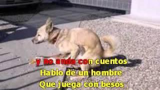 sucio perro karaoke