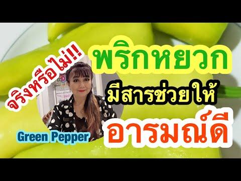 EP 354 พริกหยวกมีสารที่กินแล้ว อารมณ์ดี มีความสุข   Green Pepper   พี่เล็ก Lek Amazing
