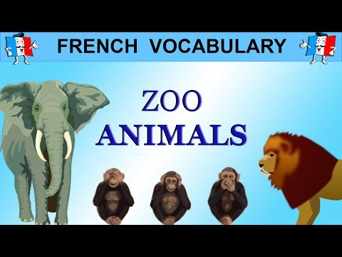 French Vocabulary - ZOO ANIMALS IN FRENCH