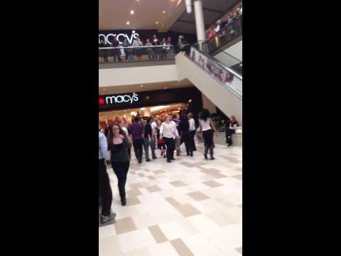Crossgates mall flashmob proposal